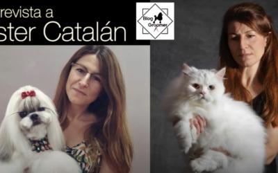 Entrevista a Ester Catalán con Blog Groomer